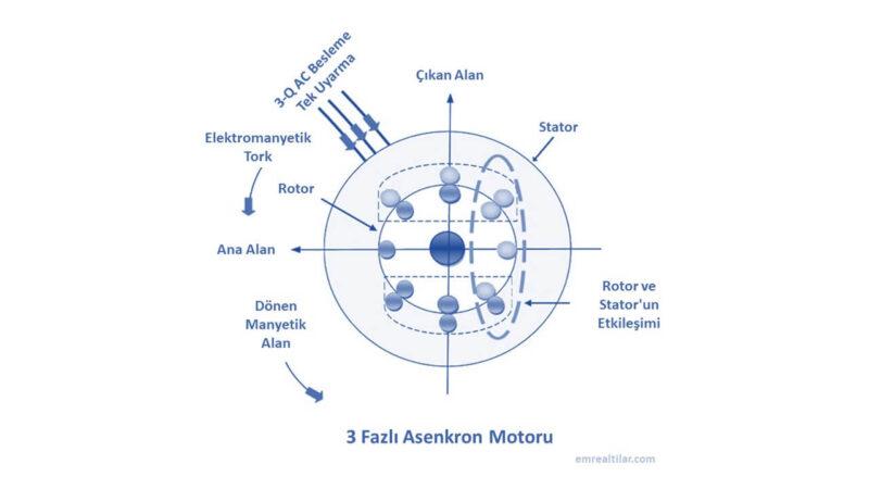 3 Fazlı Asenkron Motoru